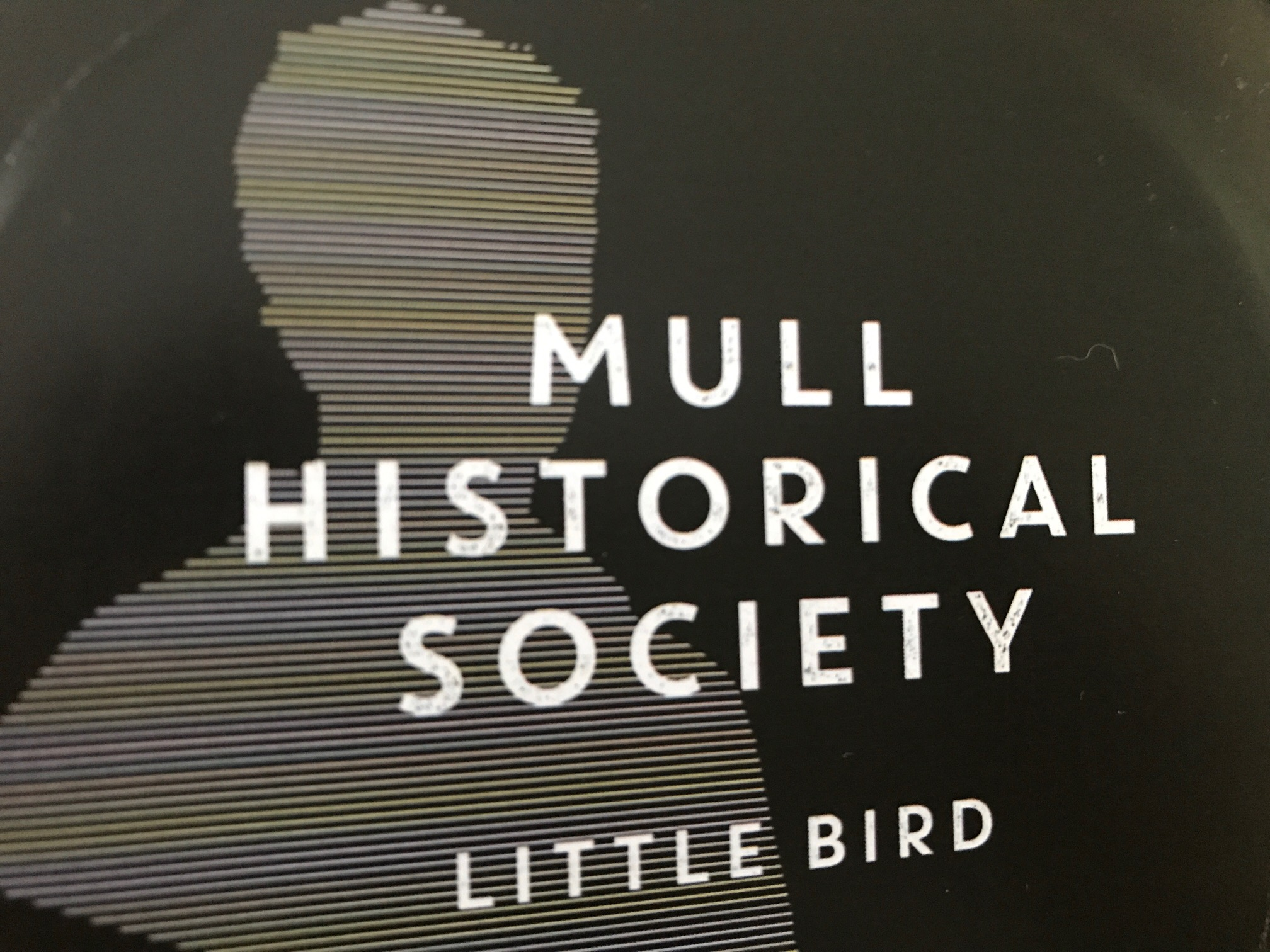 Acclaim for the New MHS single 'Little Bird' – WATCH/STREAM Now!
